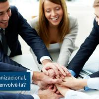 Cultura organizacional, por que desenvolvê-la?